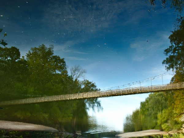 turkey run suspension bridge