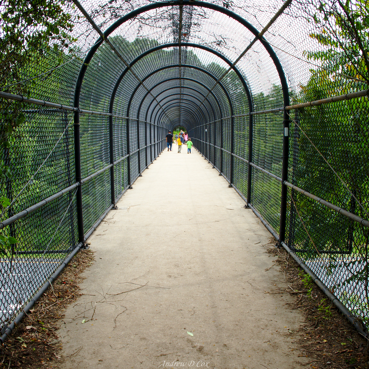 appalachian trail overpass