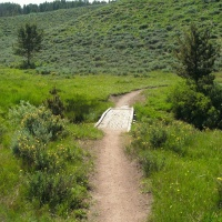 bridge williams creek trail hiking mountain biking